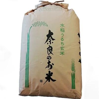 この画像には alt 属性が指定されておらず、ファイル名は 奈良県天理市.jpg です
